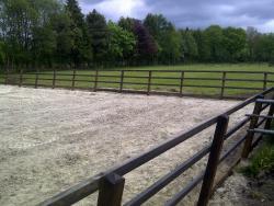 Paardrijbakken standaard