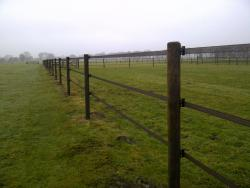Ribbon Fence