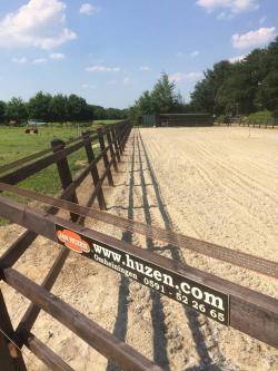 Paardrijbakken Dressuur